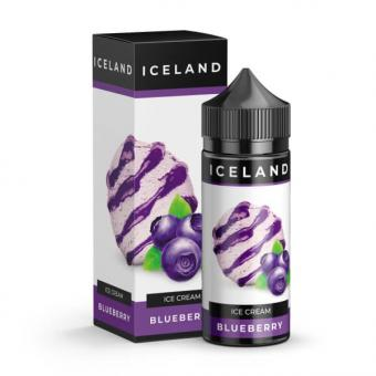 Blueberry 120ml by Iceland